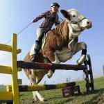 Társkereső tanácsok modern lovaglás